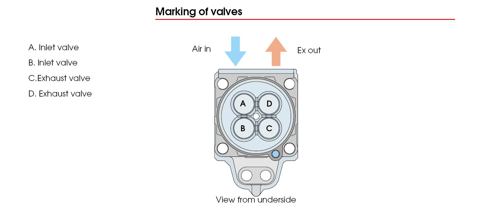 Engine Exhaust Valve DNJ EV149